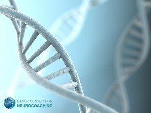 hvad er neurocoaching
