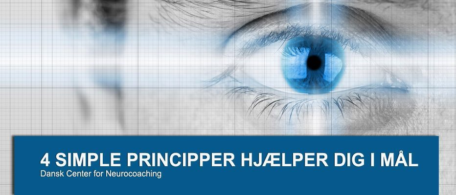 De fire Neurocoaching-principper
