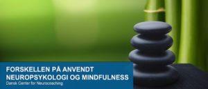 FORSKELLEN-PÅ-ANVENDT-NEUROPSYKOLOGI-OG-MINDFULNESS