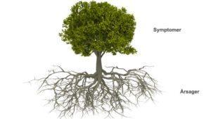 HVORFOR NEURO–PSYKOLOGI?