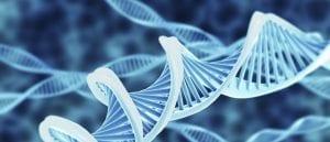 Videnskaben bag Neurocoaching