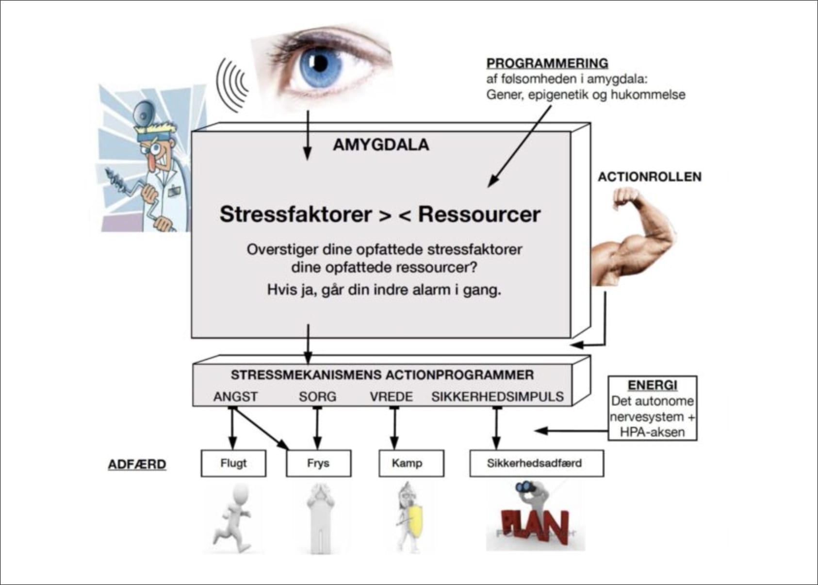 Din-stresssmekanisme-fungerer-som-en-husalarm